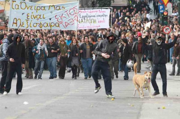 Riot Dog is Back (7 pics)