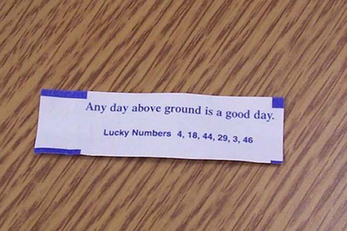 Hilarious Fortune Cookies Fortunes (40 pics)