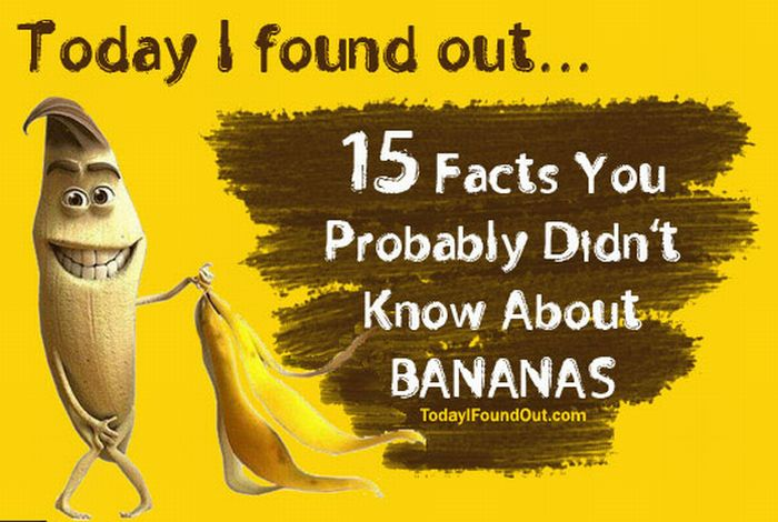 15 Facts You Probably Didn't Know About Bananas (infographic)