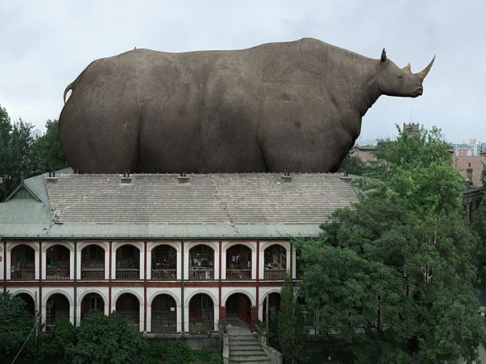 Giant Animals (6 pics)