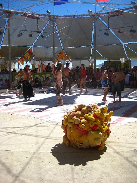 Burning Man (168 pics)