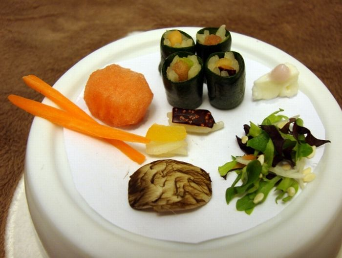 Sushi for My Little Friend (3 pics)