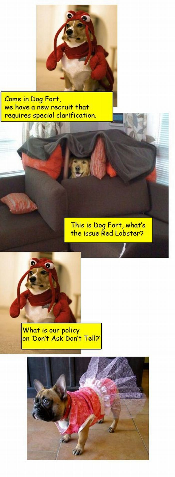 Dog Fort Comics (18 pics)