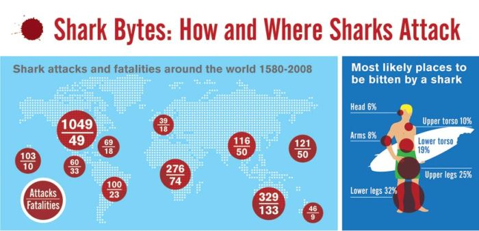 Shark attacks (infographic)