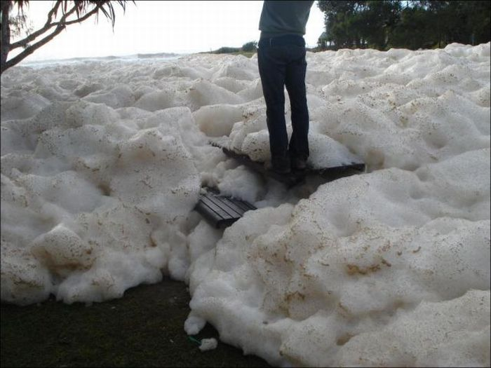 Strange Foam on the Coast of Australia (15 pics)