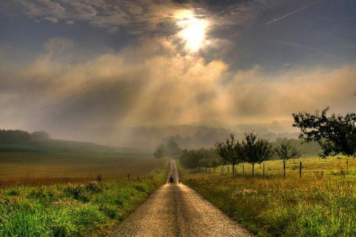 Poema Cuando Camino autor Rodrigo Troncoso Beautiful_roads_61