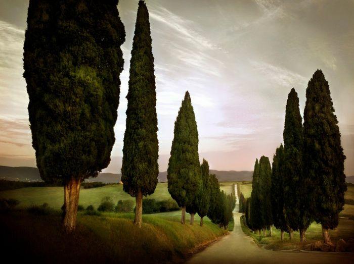 Imagenes Rutas y Caminos