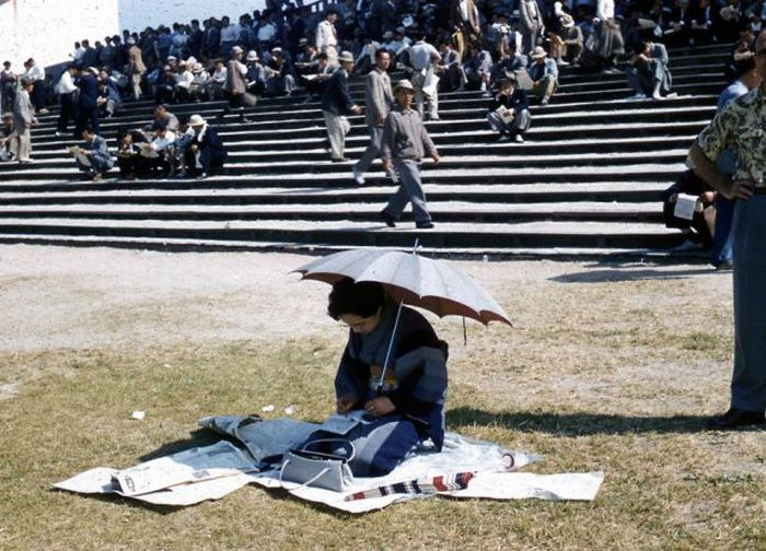 Japan in the 1950's (52 pics)