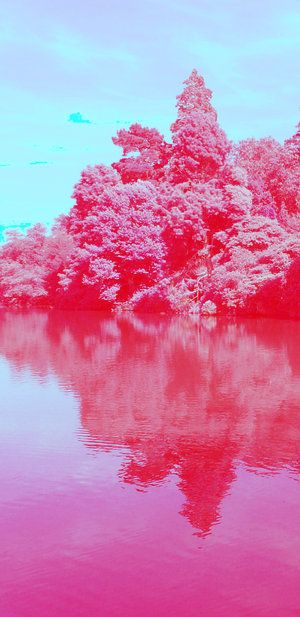 Beautiful Infrared Landscapes (75 pics)