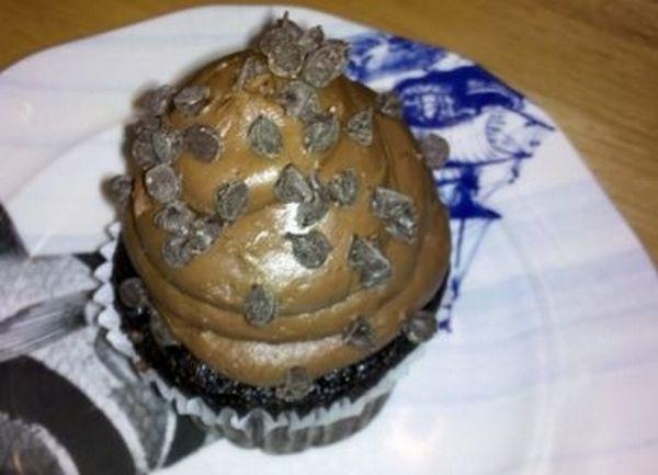 Turd Cakes (40 pics)