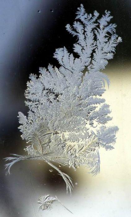 Snow Art (21 pics)