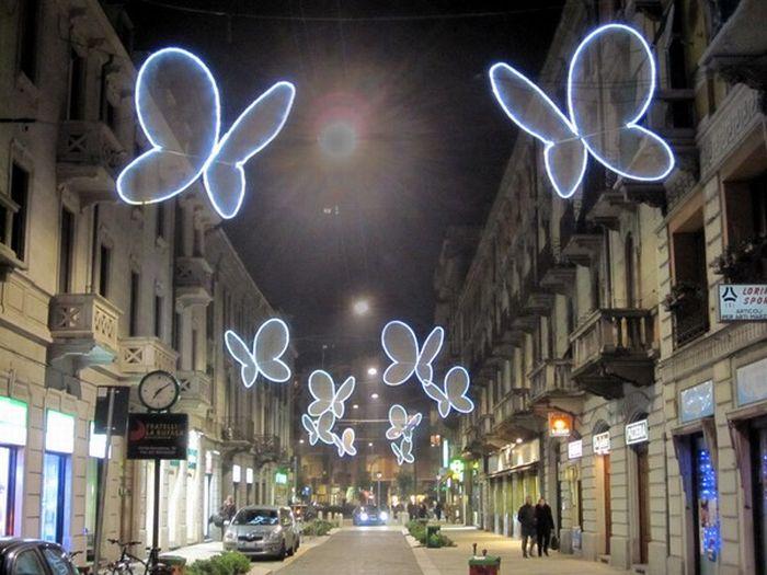 Light Butterfly (8 pics)