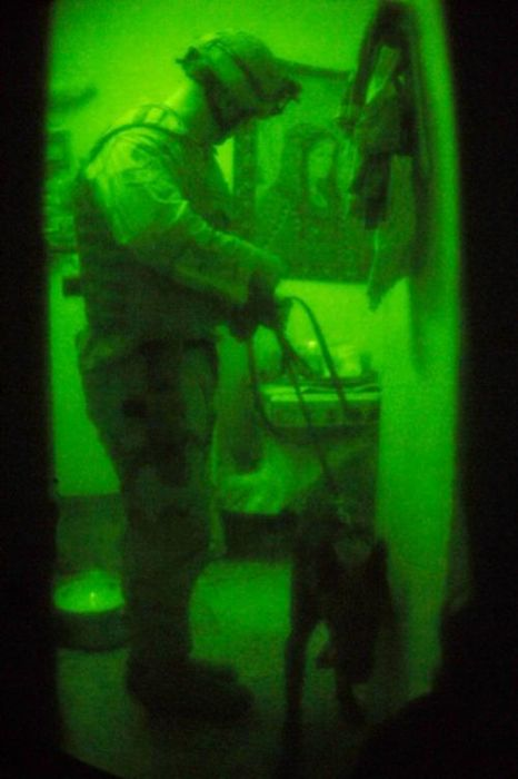 Military Dogs at Night (28 pics)