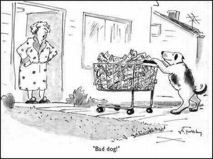 Collection of Funny Cartoons (43 pics)