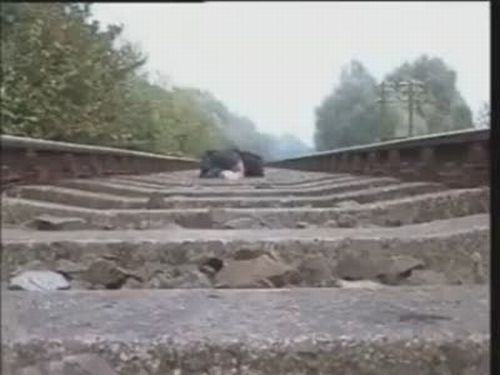 Insane Man Films Train Rolling Over Him