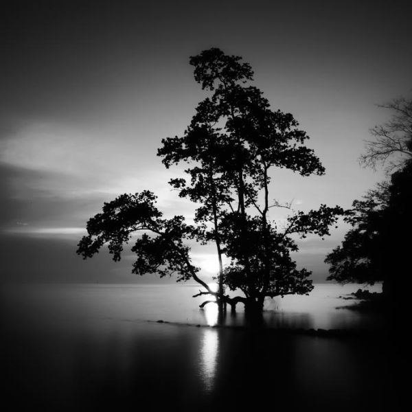 Black and White Ocean and Land Photographs (16 pics)