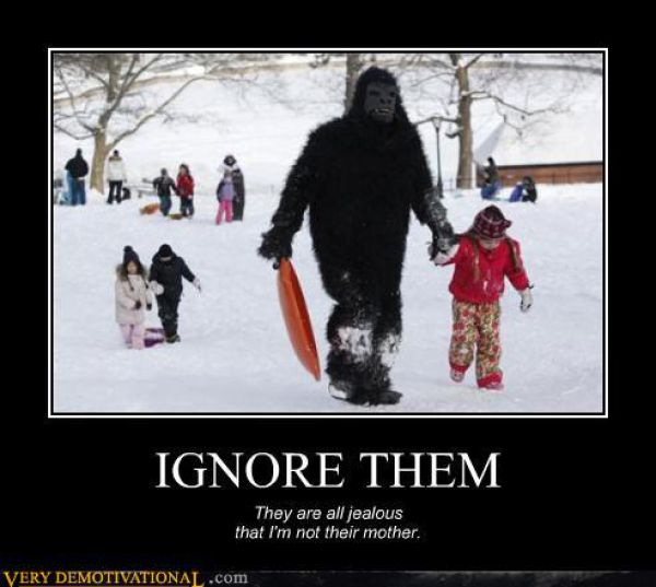 Funny Demotivational Posters (53 pics)