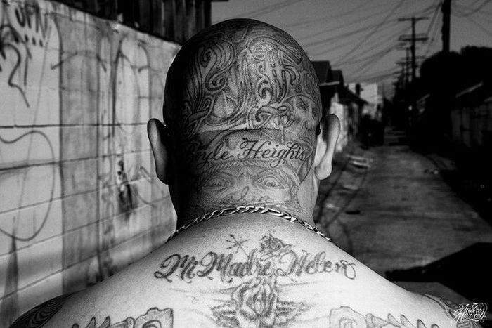 L.A. Cultura (47 pics)