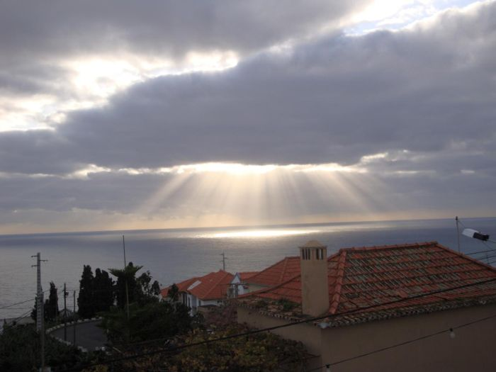 Mysterious Madeira (9 pics)
