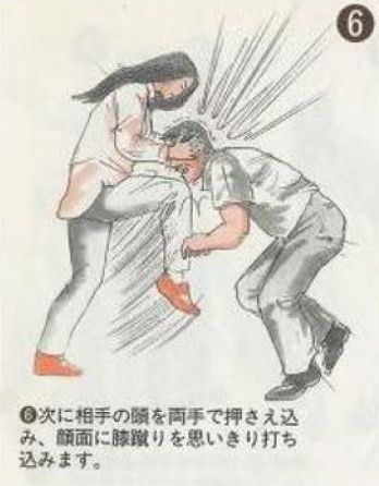 Asian Art of Self-Defense (8 pics)