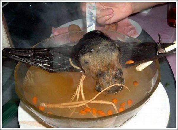 Delicious Bat Soup (11 pics)