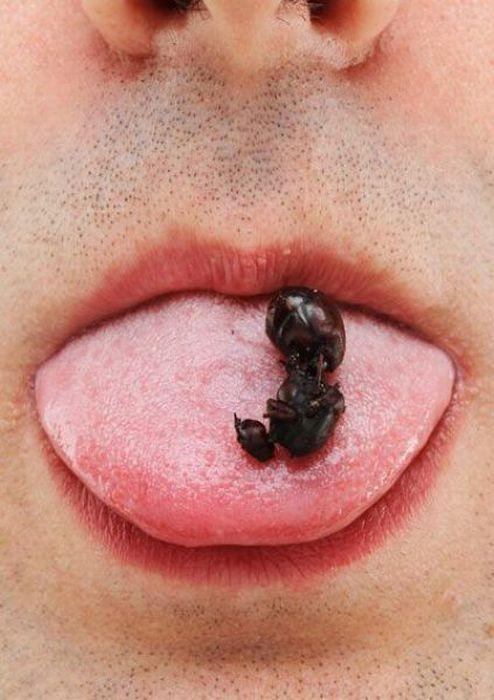 More Strange and Disturbing Food (27 pics)