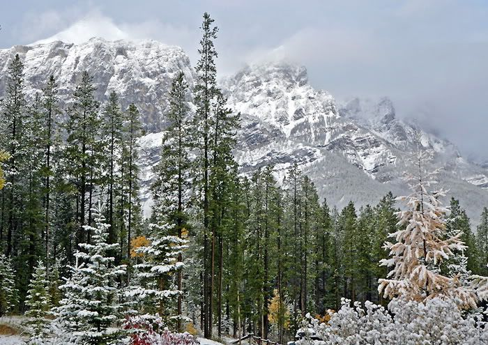 Awesome Mountain Color In Winter Photos (20 pics)