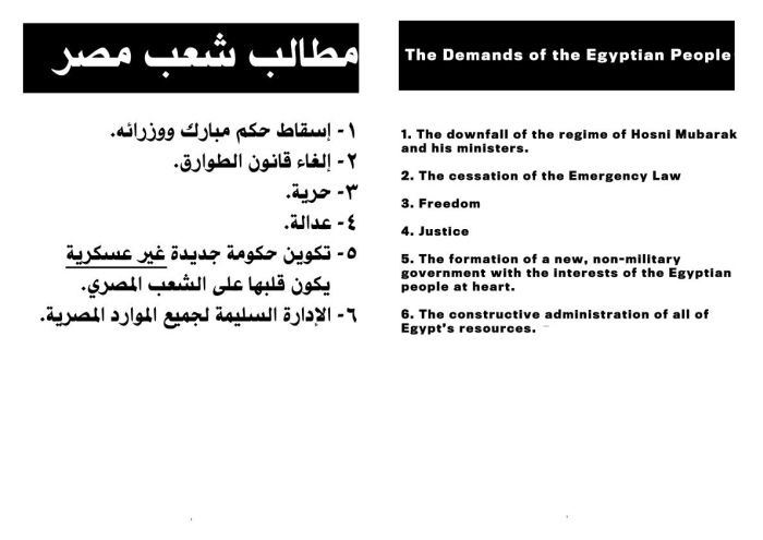 Egyptian Protest Plans (9 pics)