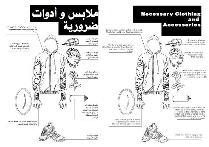 Egyptian Protest Plans (9 pics)