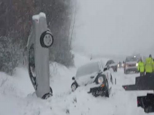 Car Noseplants In the Snow