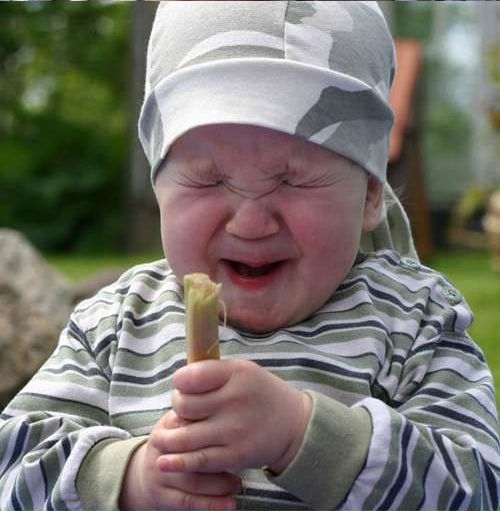 Baby Tries Rhubarb for Very First Time (6 pics)