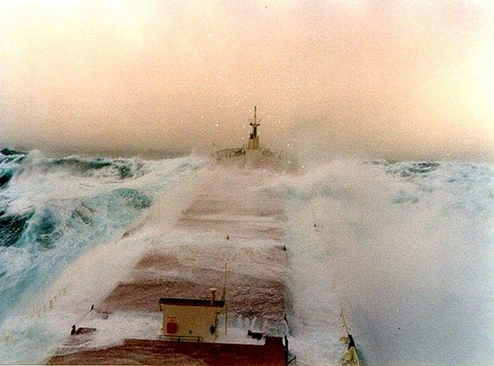 Fighting the Storm (36 pics)