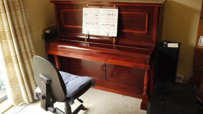 There is Something Inside This Piano (6 pics)