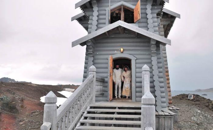 Polar Wedding (11 pics)
