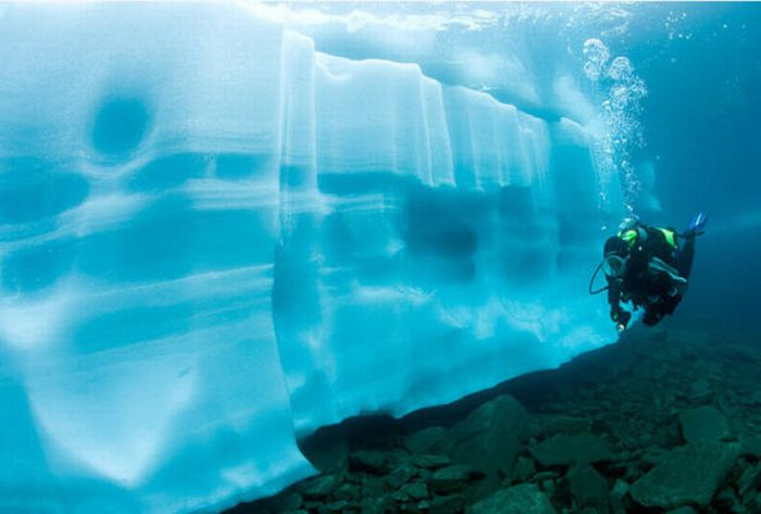 Ice Diving (15 pics)