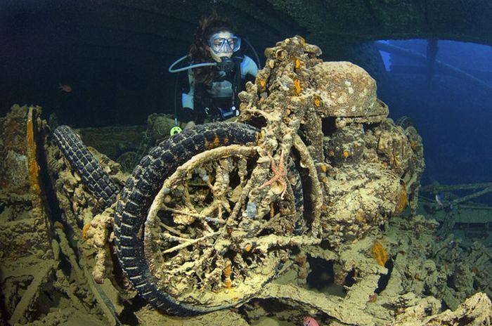 Ship Wrecks around the World (10 pics)
