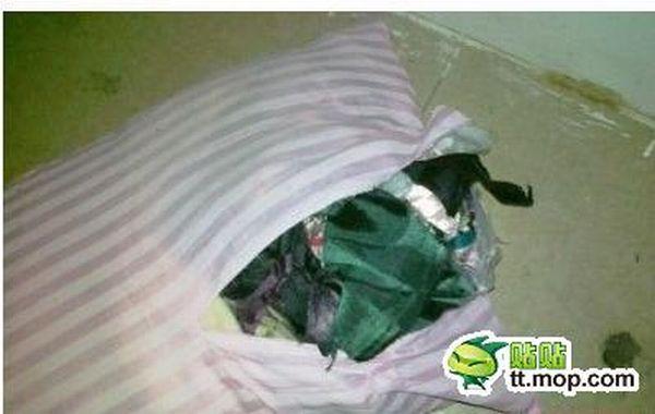 Chinese Pillow (5 pics)