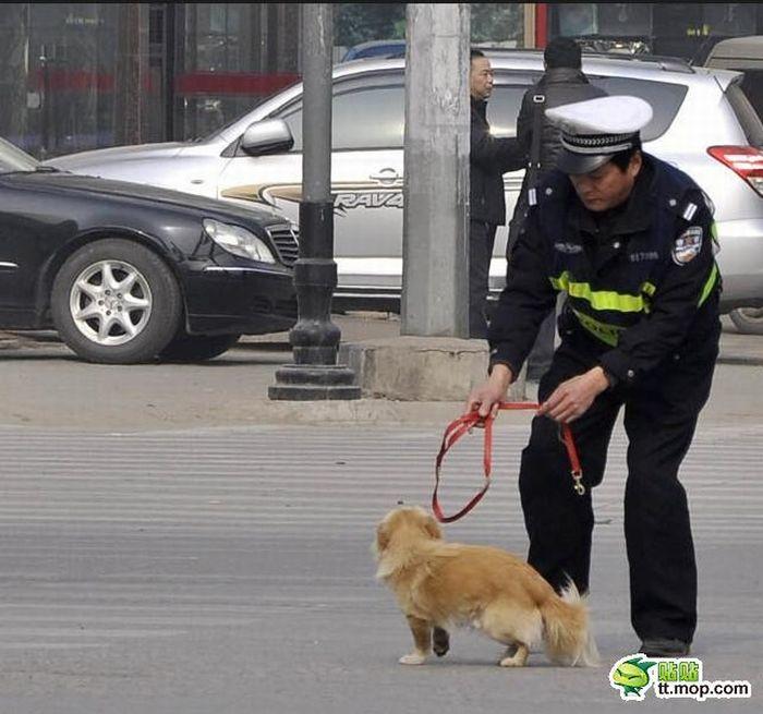Policeman and Dog (6 pics)