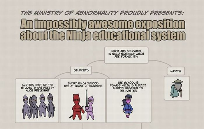 Ninja Educational System (1 pic)