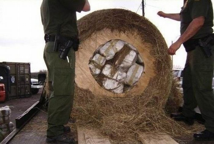 What's Inside This Haystack? (4 pics)