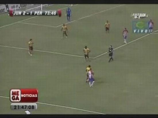 Luis Moreno Kicks Owl during Soccer Game