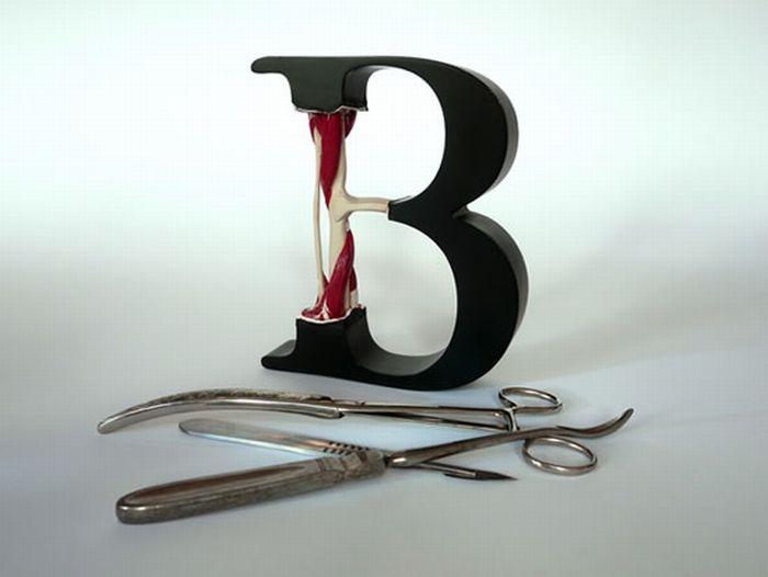 Anatomy of Letters (25 pics)