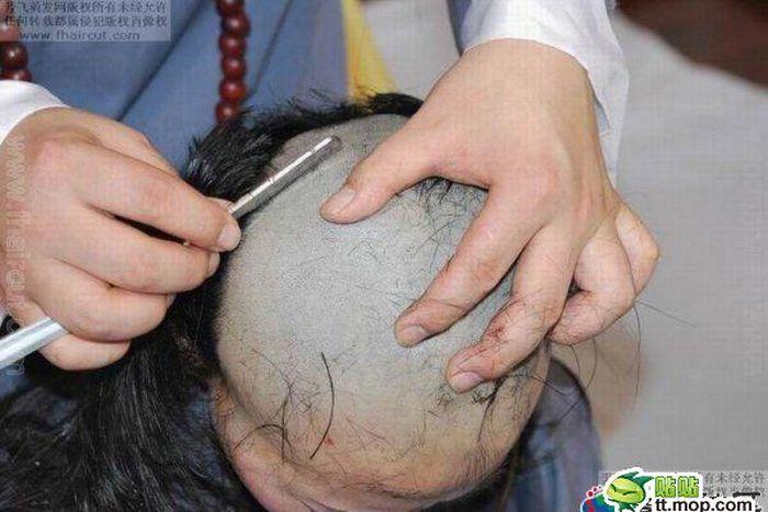 Haircut (7 pics)