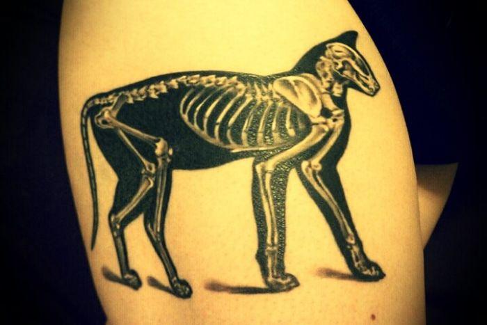 Nice Tattoos (180 pics)