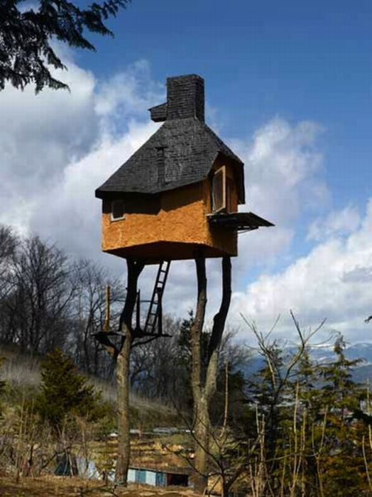 The Most Dangerous Treehouses (21 pics)
