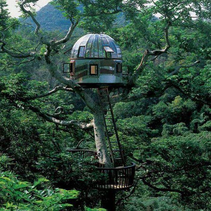 The Most Dangerous Treehouses (21 pics)
