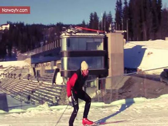 Polar Bear on Biathlon Track