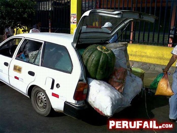 Funny Photos from Peru (63 pics)