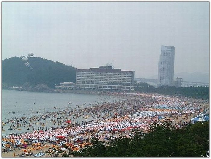 Beach in South Korea (12 pics)