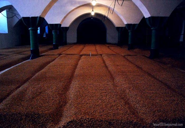 Beer Paradise in Czech Republic (25 pics)